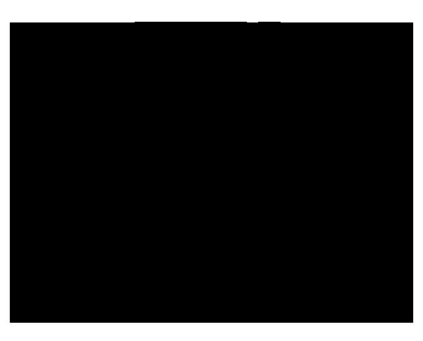 Guinness World Record Holder Carisa Hendrix